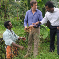 Tim is shown ginger in Cochin, India